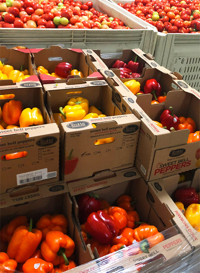 Peppers and tomatoes that were donated to the Prairie Gleaners